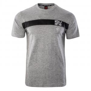 Men's T-shirt IGUANA Gordon, Gray melange