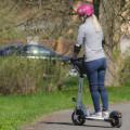 E-Scooter inSPORTline Saturian
