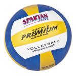 Volleyball Spartan indoor