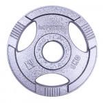Olympic Steel Plate inSPORTline Hamerton 5 kg